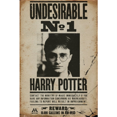 Harry Potter Undesirable No 1 Poster
