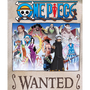 One Piece Wanted Poster Collection Vol. 2